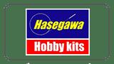 hasegawa2018