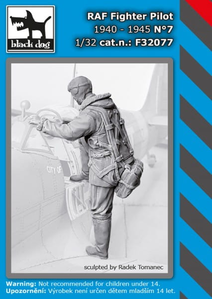 Black Dog RAF fighter pilot N°7 / 1:32