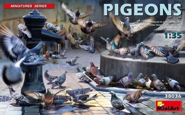 Pigeons / 1:35